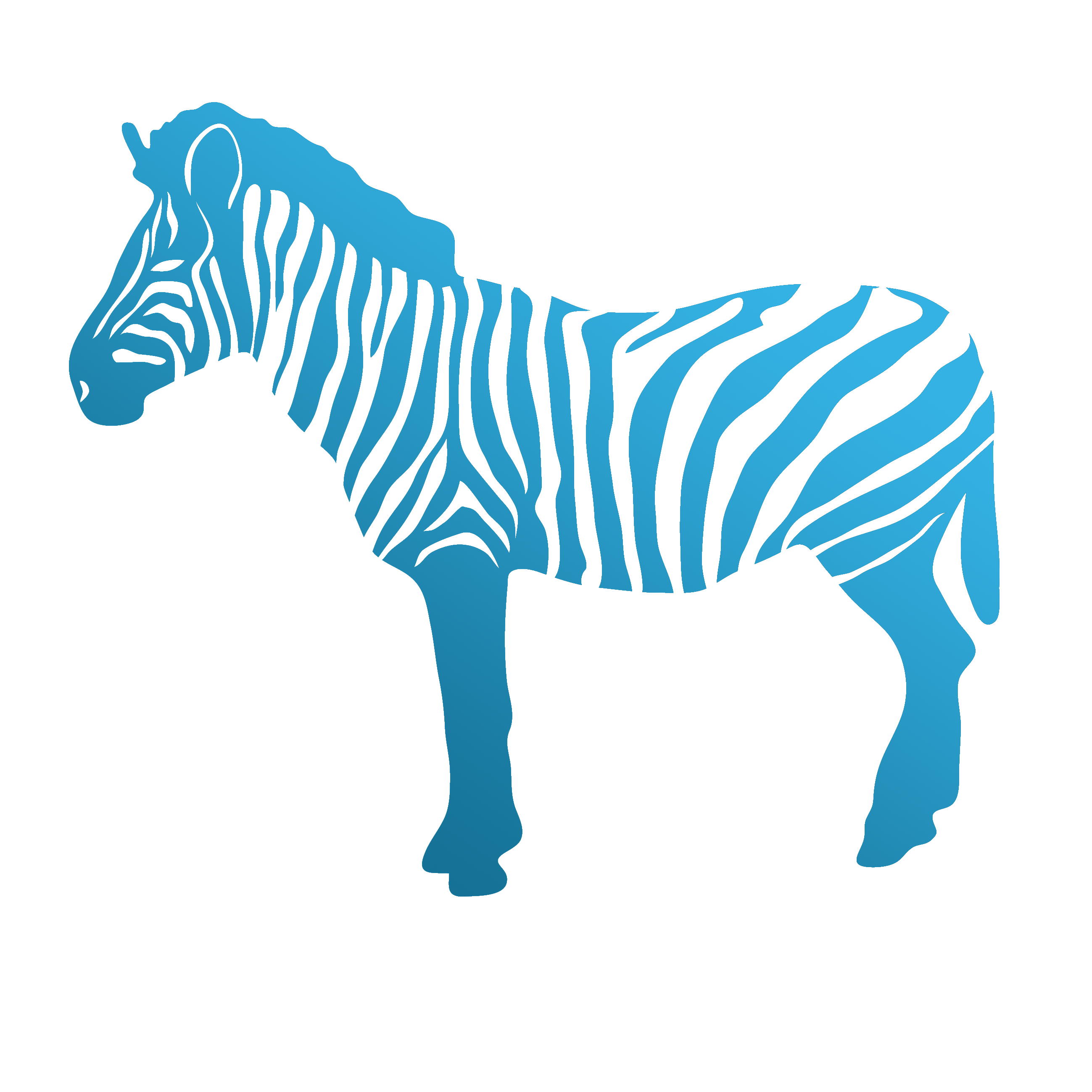 attazoo_zebra
